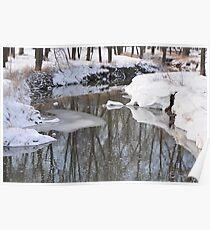 Snowy River scene Poster