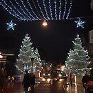 Le Touquet Christmas Lights - White Trees by seymourpics