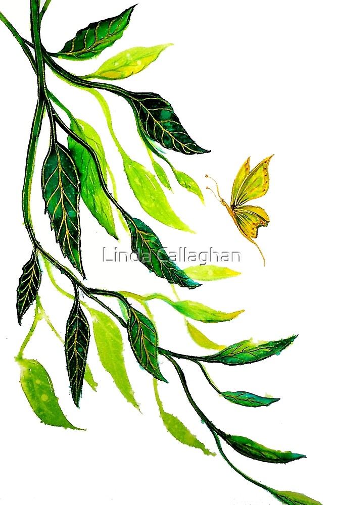 The Leaf Butterfly by Linda Callaghan