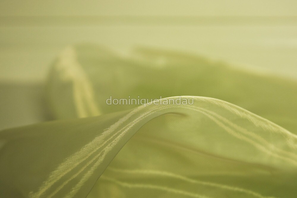 The soft touch I by dominiquelandau