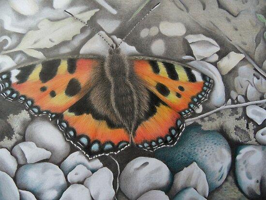 'Delicate Beauty II' by Dawn Wakelam