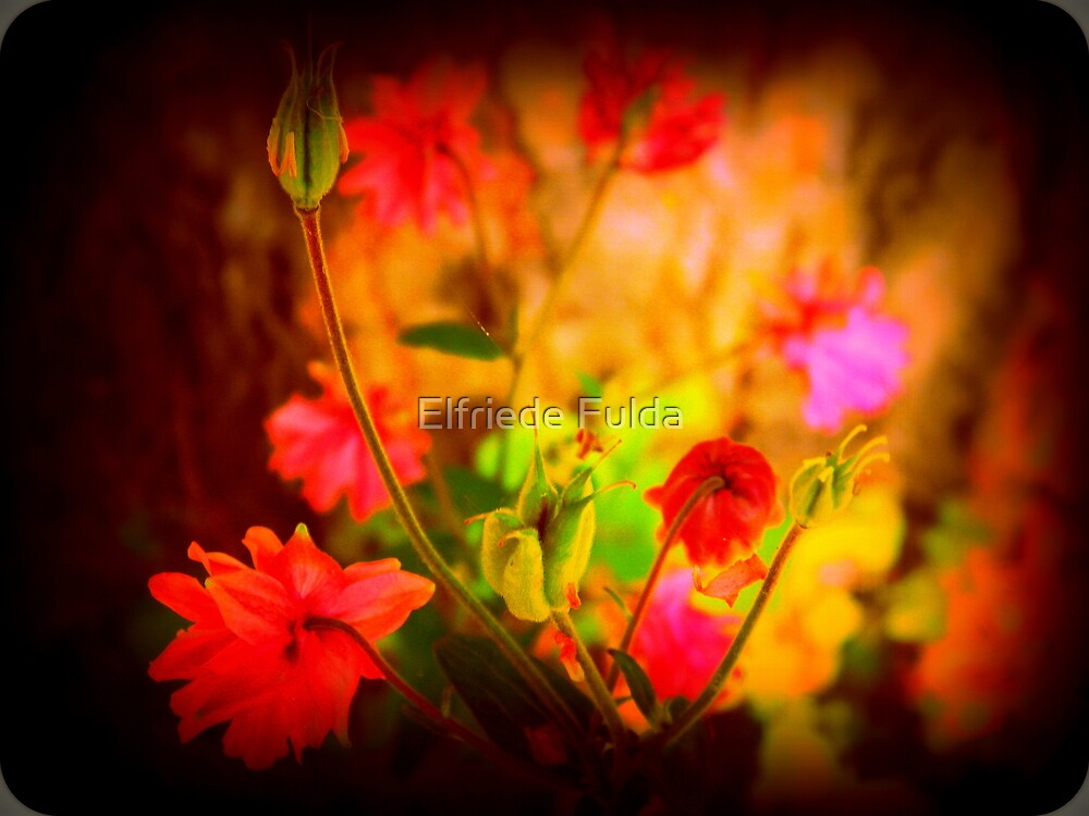 Can't Wait For Summer ! by Elfriede Fulda