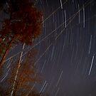Atlanta Star Light Trails by RayDevlin