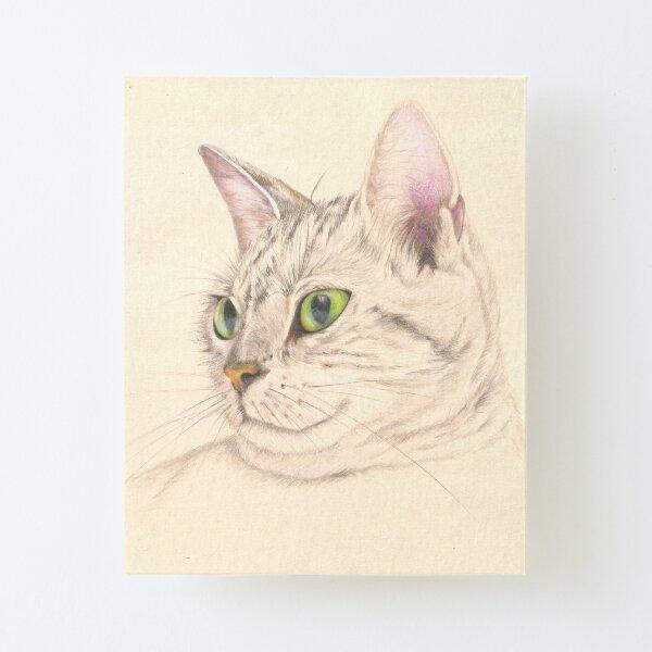 Gato realizado con lápices de colores Lámina montada de lienzo