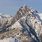 Desolation Lookout and Hozomeen Mountain by lizalady