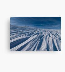 Winter Fellowship Canvas Print