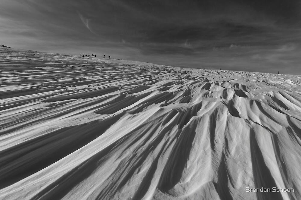 Winter Fellowship by Brendan Schoon