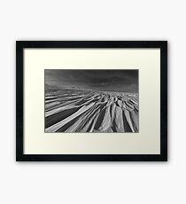 Winter Fellowship Framed Print