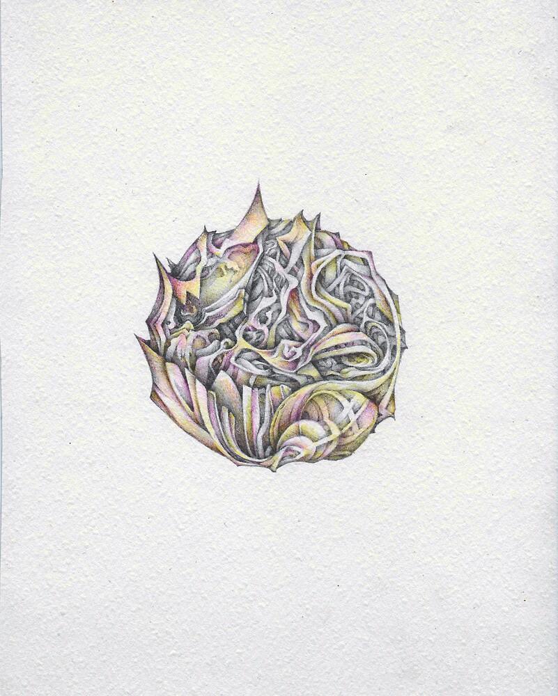 cigarette by Andrew Kilgower