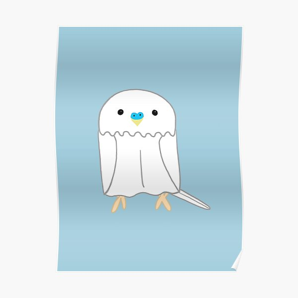 Cute white budgie boy Poster