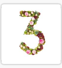The number Three Part of a set of letters, Numbers and symbols Sticker