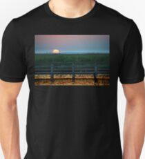 The Atlantic Swollows  T-Shirt
