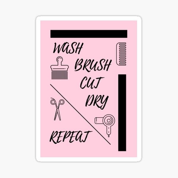 Pink Wash Brush Cut Dry Repeat  Sticker