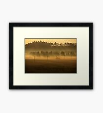 Through the Mists Framed Print