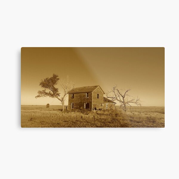 South Dakota Farmhouse by Gina Lee Ronhovde Metal Print