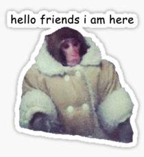 hello friends i am here: ikea monkey Sticker