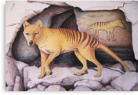 """Tasmanian Tiger (Thylacine)"" Canvas Prints by Elizabeth ..."