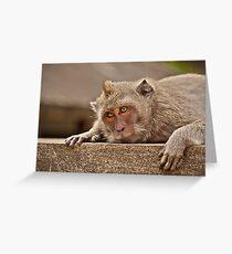 Macaques of Ulu Watu Greeting Card