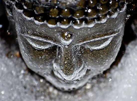 Iced Buddha - 2 by nwexposure
