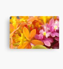 Pink and Orange Orchids Canvas Print