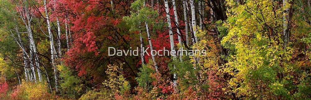 Autumn Foliage Panorama by David Kocherhans