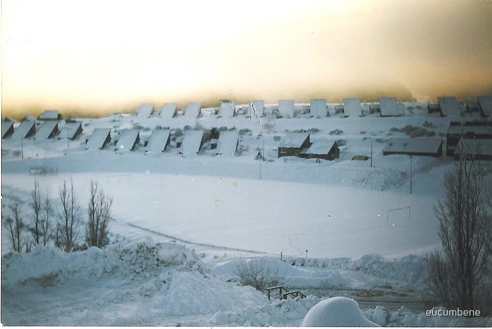 Cabramurra Township in mid-winter by eucumbene