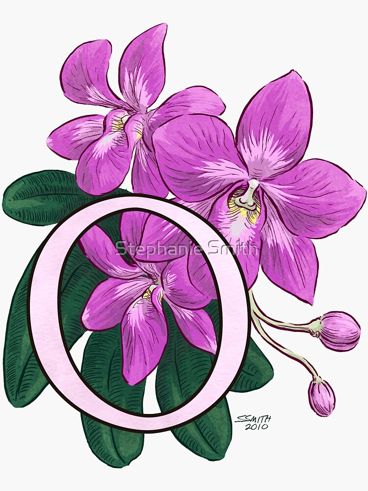 O is for Orchid - full image by stephsmith
