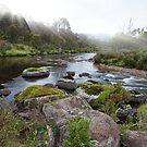 Thredbo River by Sheaney
