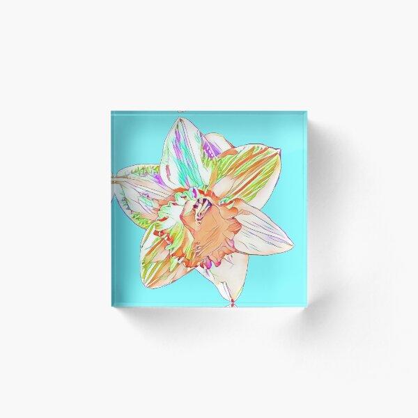 DaffodilBloom Acrylic Block