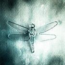 Dragonfly by Carlos Restrepo