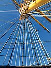 Up the mast.... by globeboater