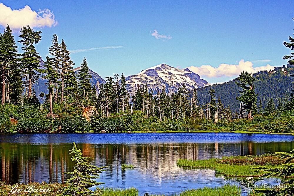 """""""Spring in the Cascades"""" by Lynn Bawden"""