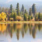 Smokey Autumn at Moose Pond by Kim Barton