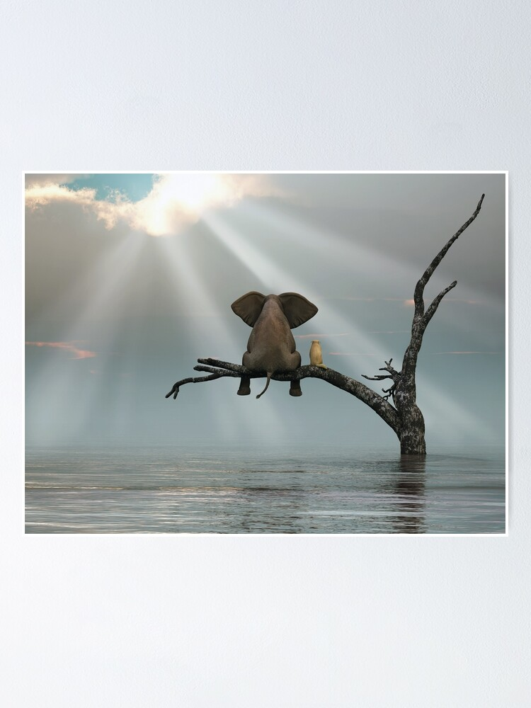 Alternate view of elephant and a dog are sitting on a tree Poster