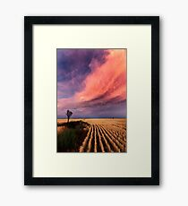 Taking the Long View Framed Print