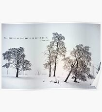 The Poetry of The Earth Poster
