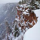 Red Canyon Cliffs by Kim Barton