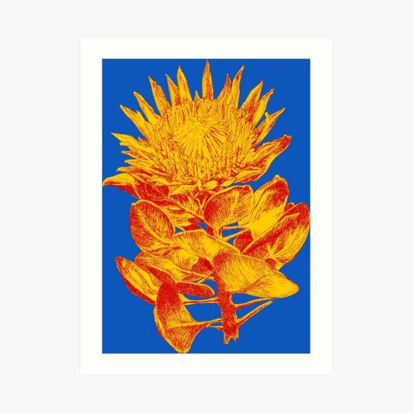 Protea cynaroides turmeric ink art prints Art Print