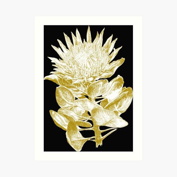 Protea cynaroides gold ink art prints Art Print