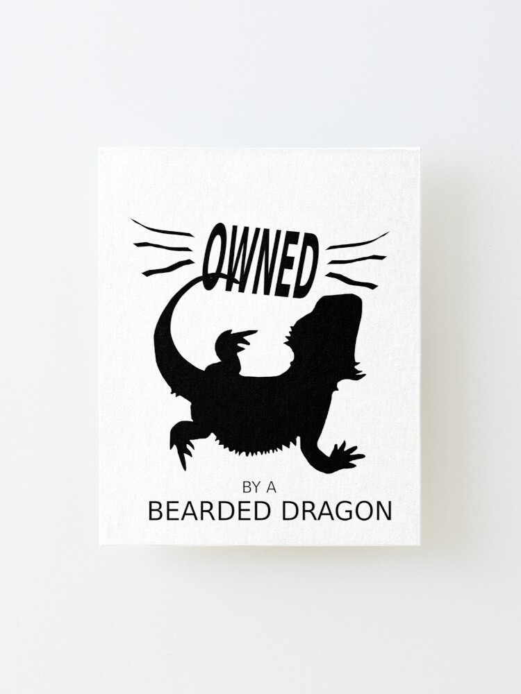 Alternate view of Owned By A Bearded Dragon Mounted Print