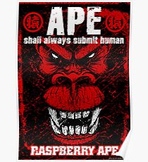Raspberry Ape v2.0 Poster