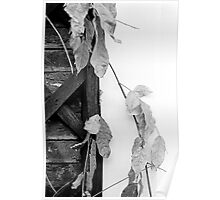 Leaves, Poster