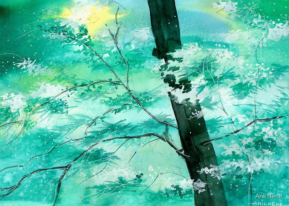 White N Green by Anil Nene