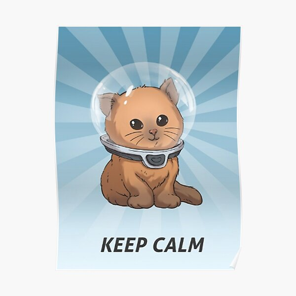 Keep Calm Kitty 69 Poster