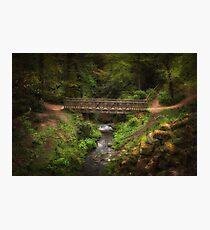Bridge in Roundhay Park (HDR) Photographic Print