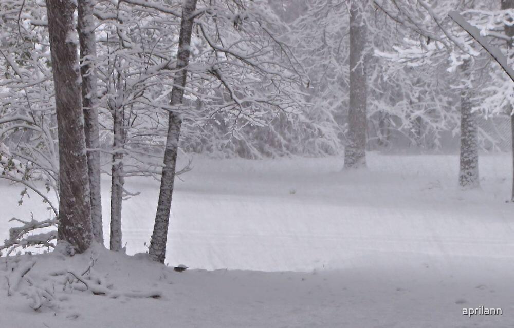 Winter Woods by aprilann