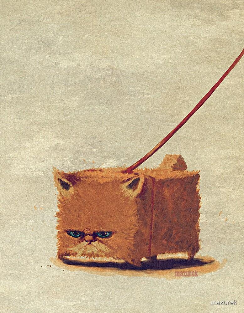 modern cat by mazurek