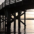 Sunset Silhouette The Pier by Annie Underwood