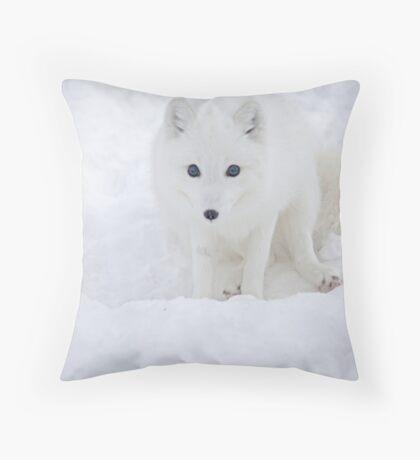 Arctic fox / Vulpes lagopus Throw Pillow