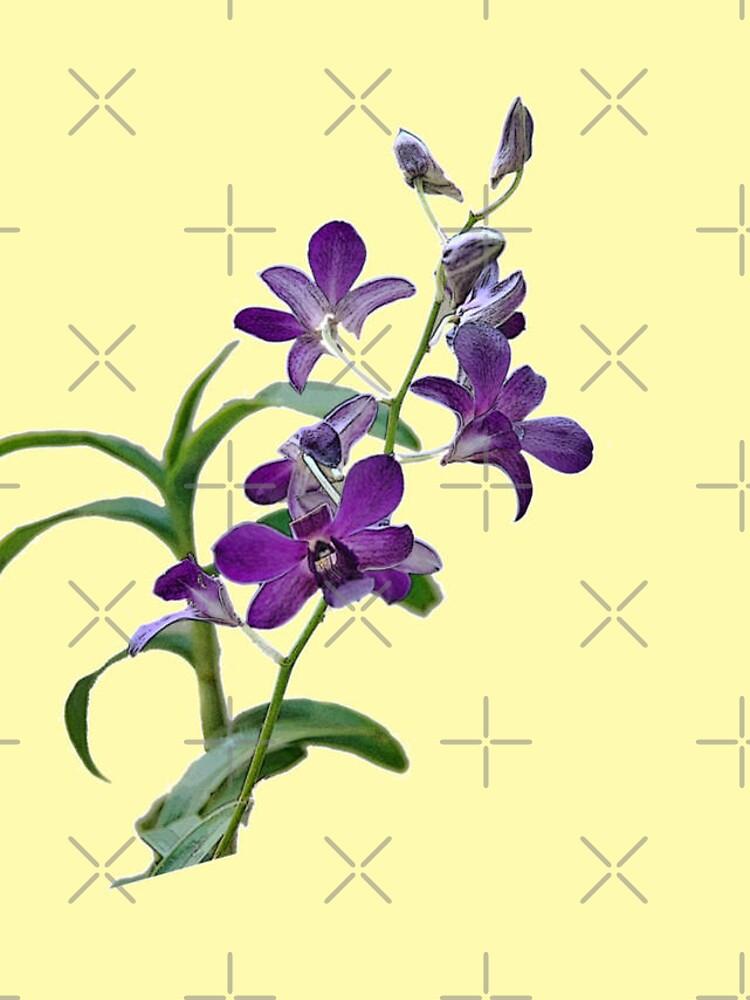 Purple Cymbidium Orchids for iPhone by photorolandi